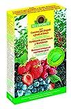 Neudorff azet engrais fraises et Myrtilles, 1kg, 14,7x 4,5x 23,2cm, ...