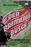 Der brennende Busch - Der entschleierte Weg der Mystik - Karl Weinfurter