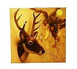 HAAC Wandleuchte Led Bild Leuchte Hirschkopf mit 15er Leds 30
