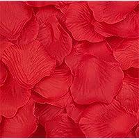 Liroyal a forma di cuore, motivo: petali di rosa rossa, Rosso, 2 bags