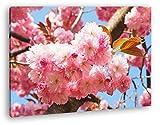 deyoli Japanische Kirschblüten Format: 60x40 als Leinwandbild, Motiv fertig gerahmt auf Echtholzrahmen, Hochwertiger Digitaldruck mit Rahmen, Kein Poster oder Plakat