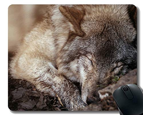 Gaming Mouse Pad Benutzerdefinierte, Sleeping Wildlife Raubtier Wolf Rutschfeste Gaming Mouse Pad
