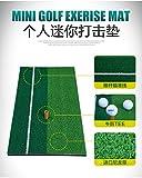adahill (TM) jaulas Red de práctica de entrenamiento de golf formación ayuda con libre 30* 60cm Golf Chipping conducción práctica Mat, Mat