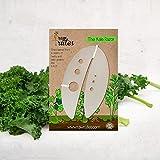 Raw Rutes Kale Razor - Kale and Herb Stripping Tool Image