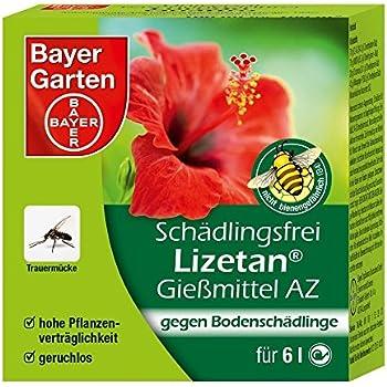 bayer garten combist bchen lizetan f r zimmer balkonpflanzen 1 st ck 100 x 2g. Black Bedroom Furniture Sets. Home Design Ideas