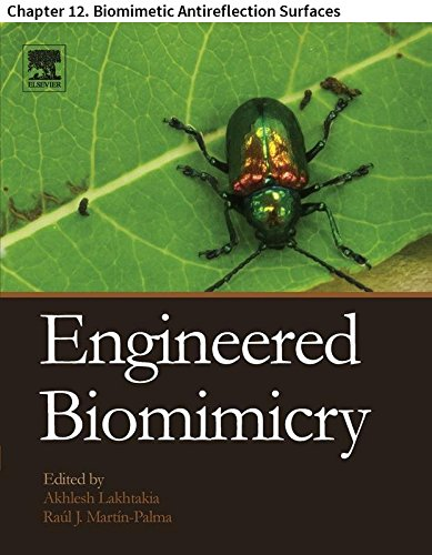 Engineered Biomimicry: Chapter 12. Biomimetic Antireflection Surfaces (English Edition) -
