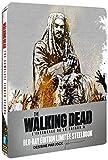 The Walking Dead - L'intégrale de la saison 8 [Édition Limitée boîtier SteelBook]