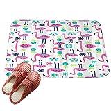 LvRaoo Fußmatte Praktische Schmutzfangmatte – Fußabtreter | Fussabstreifer - Flamingo Blumen Blatt Streifen Druck (# 2, 60*40cm)