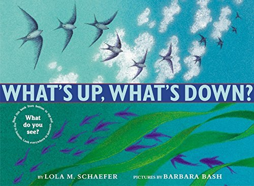 What's Up, What's Down? by Lola M. Schaefer (2002-08-06)