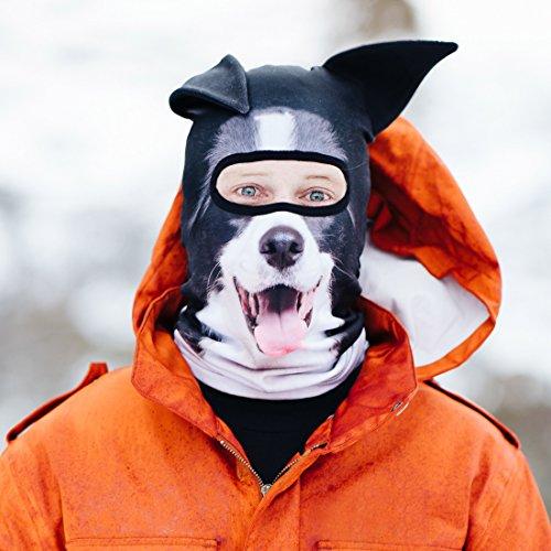 Beardo  Original Sturmhaube Sturmhauben HD (verschiedene Designs) | Skimaske, Kälteschutz, Gesichtsschutz, Sturmmaske (Collie)