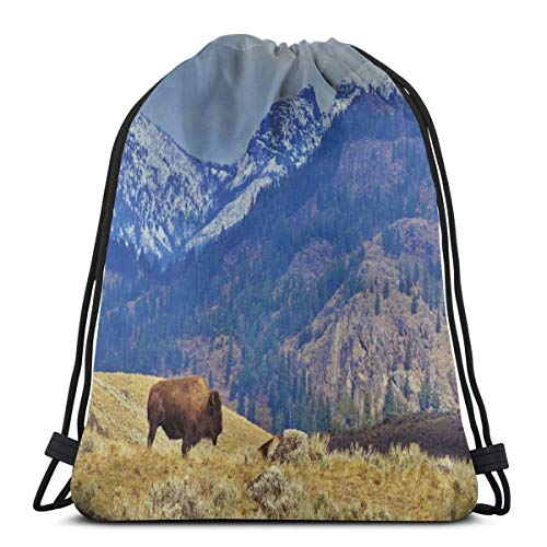 Drawstring Shoulder Backpack Travel Daypack Gym Bag Sport Yoga, Panoramic Landscape with Lonely Bison and Snowy Mountains at Grand Loop Yellowstone,5 Liter Capacity,Adjustable. Food Loop