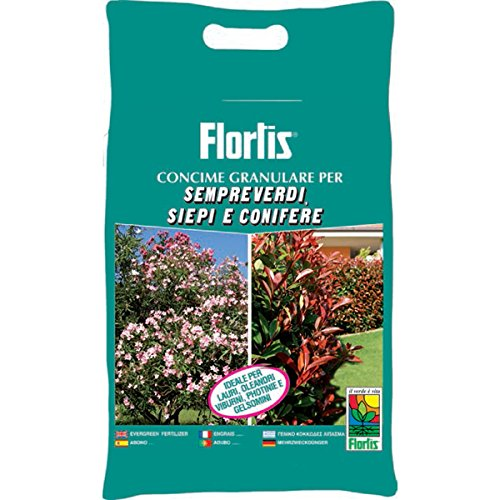 sempreverdi-siepi-e-conifere-flortis-orvital-kg-5-1000033427