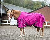 Equestrian King Lightweight No Fill Turnout Horse Rug 600D Standard And Combo Neck Waterproof Raspberry (Standard, 6'0'')