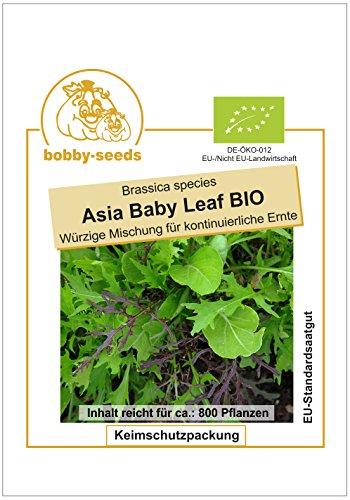 Bobby-Seeds Bio-Salatsamen Asia Baby Leaf Pflücksalat Portion
