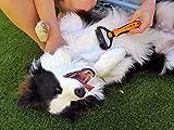 Wellness Fellpflege Hundebürste von BELLE&BLU - 6