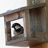 Mangeoire pour oiseaux 'wengue'