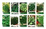Kräuter Saatgut 10 Sorten Set mit Basilikum Dill Oregano Salbei