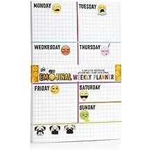 NPW NPW41651 - Taco calendario y planificador semanal de escritorio con emoticono