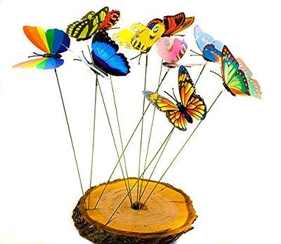 HOMETOOLS.EU - 10 Stück DEKO SCHMETTERLINGE - bunt gemischt   Garten Balkon Blumentopf Blumenkasten Blumenstrauß Stecker   Schmetterlinge flattern im Wind von HomeTools.eu - Du und dein Garten