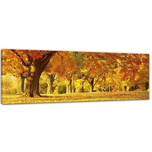 Keilrahmenbild - Herbst Szene - Bild auf Leinwand - 160 x 50 cm - Leinwandbilder - Bilder als Leinwanddruck - Pflanzen & Blumen - Natur - goldgelber Blätterwald