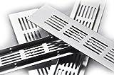 50x300mm Alu Aluminium Lüftungsgitter Stegblech Lüftungssieb Abluftgitter Lochblech Lochgitter alu eloxiert diverse Größen und Längen