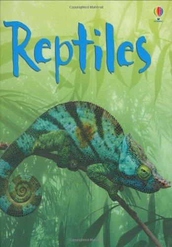 reptiles-usborne-beginners