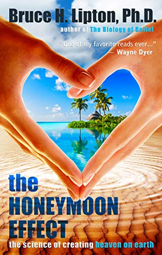 The Honeymoon Effect (English Edition)