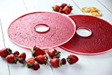 Fruchtledermatten für den Luvele Express Dörrautomat, 3 Stück Packung – Matten für Fruchtleder, Obstledermatten