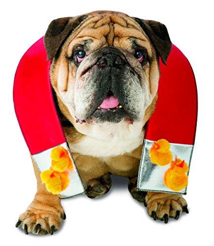 Rasta Imposta Kostüm Chick Magnet Hund, X-Small/Small
