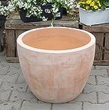 Blumentopf echt Terrakotta 40 cm , Blumenkübel für Garten und Wohnung Terracotta ........... kein Kunststoff, Blumen