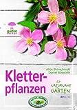 Kletterpflanzen für naturnahe Gärten