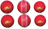#3: PSE Soft PVC Cricket Ball Suitable for Training and Practice Pack of 6
