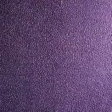 1kg (ca. 1Liter) (Grundpreis 23,90€/kg) Effektfarbe Lila Metallic, Metallic Farbe, Wandfarbe, Wand-Farbe, Glitzer Wandfarbe, Farbe mit Glitzer, Glitzereffekt, Glitzer Effekt, Glitter