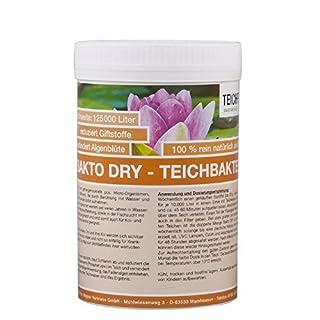 Teichpoint 250 g Bakto Dry Teich - Billionen von Mikro-Organismen