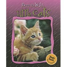Little Cats (Born to Be Wild) by Helene Montardre (2006-01-01)