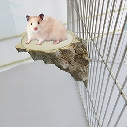 Small Animal Platform Jumping Toy Chinchilla Squirrel Pepper Log Pier Right Angle Parrot Stand Wooden Toy for Syrian Hamster Jumping Platform Board 1