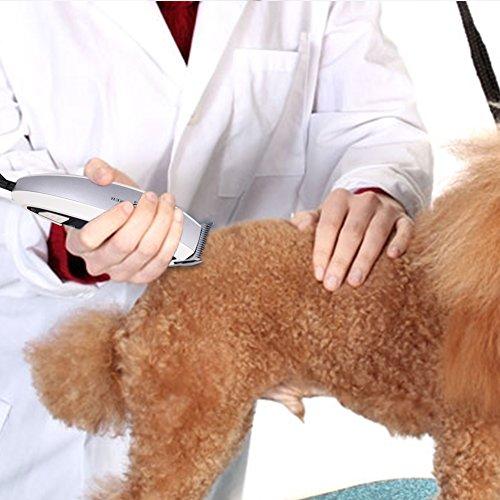 Hundeschermaschine Schermaschine Trimmer Hund Rasierer für Katze, Hund, Haustier - 2