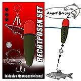 Angel Berger Hecht Posenset Köderfischset Köderfischmontage (15g)
