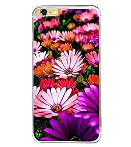 Multi Colour Flowers 2D Hard Polycarbonate Designer Back Case Cover for Apple iPhone 6S