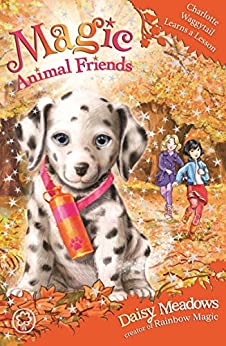MAGIC ANIMAL FRIENDS FRIENDSHIP COLLECTION 8 BOOKS BOXED SET DAISY MEADOWS NEW