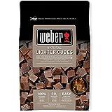 Weber 17612 - Pack de 48 pastillas de encendido marrón (caja de 15 - No desempaquetable)