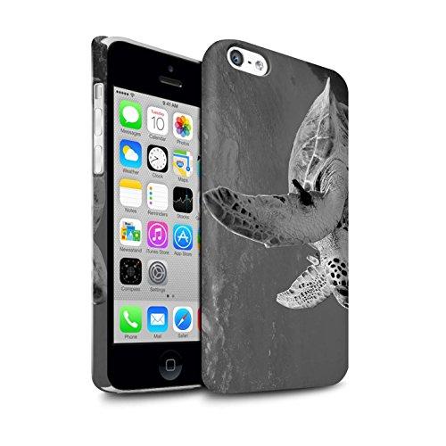 STUFF4 Matte Snap-On Hülle / Case für Apple iPhone 8 / Erdmännchen Muster / Zoo-Tiere Kollektion Schildkröte