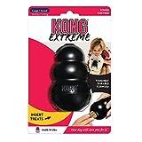 #8: Kong Extreme Dog Toy (Large)