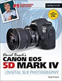 David Busch Canon EOS 5D Mark IV (David Buschs Guides)