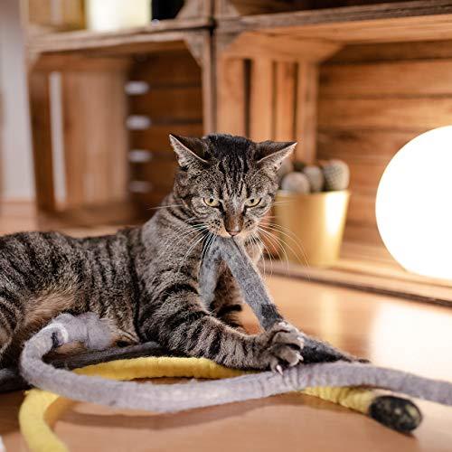 CanadianCat Company ® | Katzenspielzeug aus Filz | Snake - grün | Filzschlange