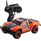 deAO RC Rally Racing Car 2.4GHz Remote Control High Speed Race Vehicle Toy Car 4x4 Buggie Jeeps