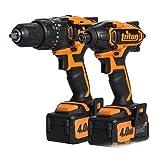 Triton Werkzeuge Advanced [5723] T20 20 V Hammerbohrer & Schlagschrauber 4.0Ah (umweltfreundliche Verpackung) (Doppelpack) - Min 3 Jahre Garantie