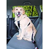 Trixie 1291 Auto-Sicherheitsgeschirr, M: 50-70 cm