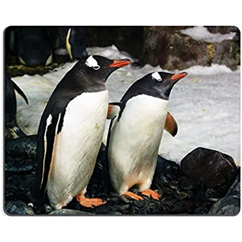 liili Mouse Pad de goma natural mousepad imagen ID: 4386014Par de Blanco y Negro Gentoo Penguins Pygoscelis papua de pie en el lado de las piedras y otros de pingüinos Nieve con en el