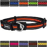 DDOXX Hundehalsband reflektierend Air Mesh | für große & Kleine Hunde | Katzenhalsband | Halsband | Halsbänder | Hundehalsbänder | Hund Katze Katzen Welpe Welpen | klein breit bunt | Orange, M